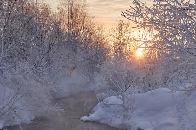 Manhã gelada de inverno à beira do rio, neblina e nevoeiro da água. luz do sol em um dia frio de inverno. arbustos e árvores na neve. ruído, grão, fora de foco