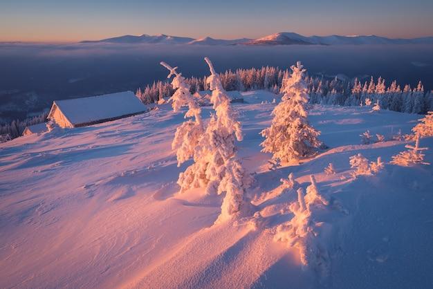 Manhã gelada nas montanhas. nascer do sol colorido. paisagem de inverno. vista de natal