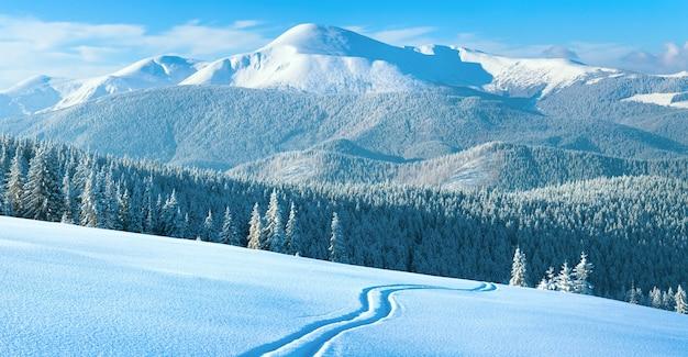 Manhã inverno calmo paisagem montanhosa com pista de esqui e floresta de coníferas na encosta (vista goverla - o monte mais alto nos cárpatos ucranianos). quatro tiros costuram a imagem.