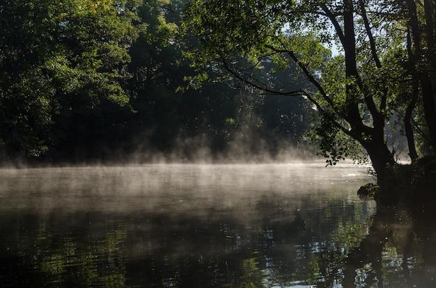 Manhã mágica com neblina sobre o lago e sol em savean