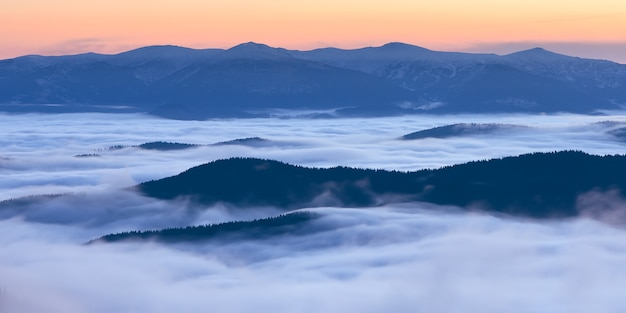 Manhã nas montanhas com nevoeiro. paisagem de verão. cárpatos, ucrânia, europa