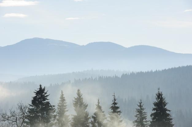 Manhã nas montanhas dos cárpatos