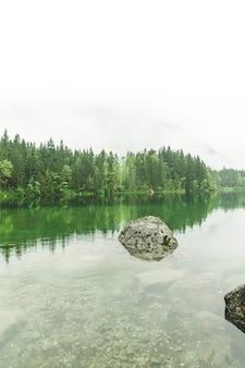 Manhã nevoenta do lago mountain