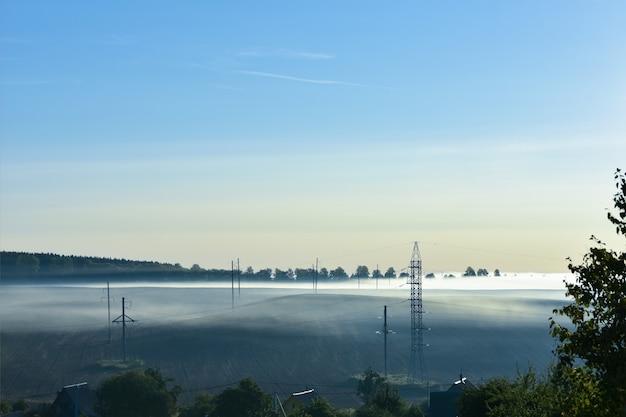Manhã nublada de verão. a estrada está no parque. nascer do sol sobre a floresta por trás da névoa espessa
