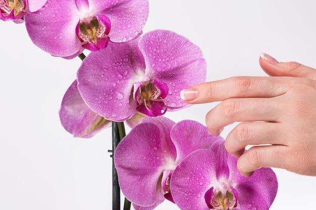Manicure francesa e flor de orquídea