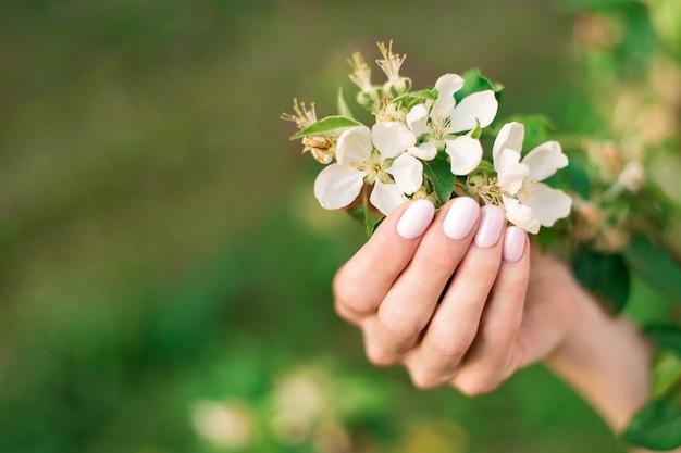 Manicure primavera suave em unhas curtas. polonês de gel. feminino mão segurando flores silvestres.