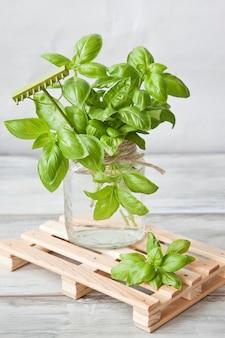 Manjericão verde fresca no frasco de vidro com água na mini-paleta de madeira.