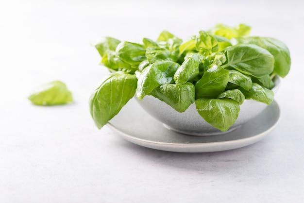 Manjericão verde fresco