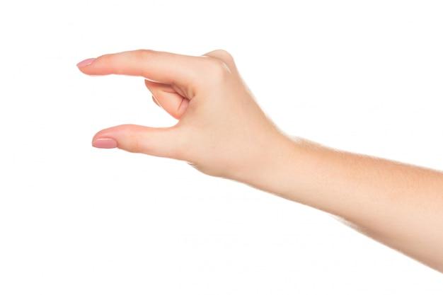 Mão bonita mulher isolada