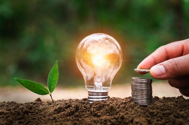 Mão colocando moedas na pilha com lâmpada e planta jovem crescendo no solo
