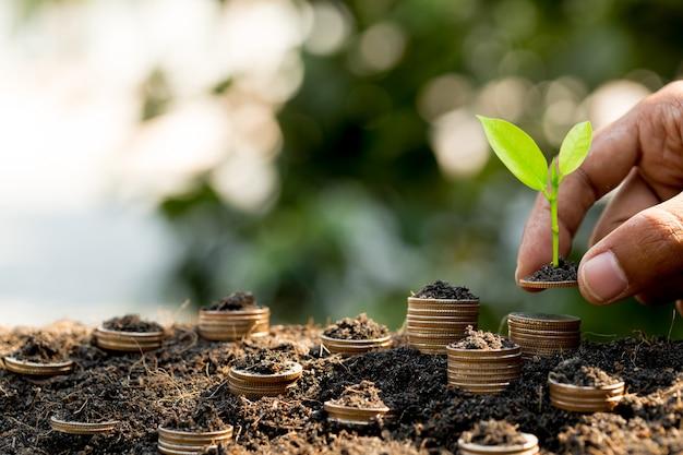 Mão colocando moedas na pilha de moedas, crescendo o gráfico