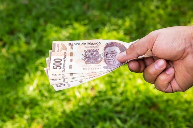 Mão com dinheiro - pesos mexicanos
