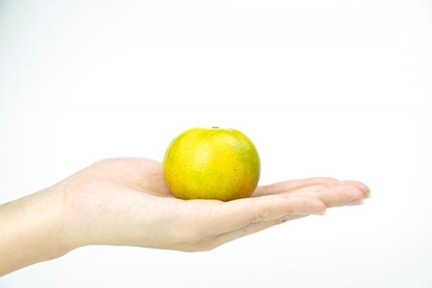 Mão com fruta laranja imatura