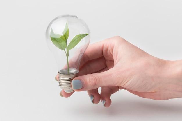 Mão com lâmpada de ecologia