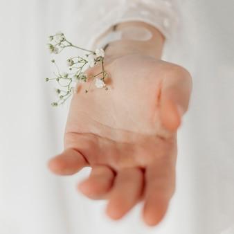 Mão com lindas flores close-up