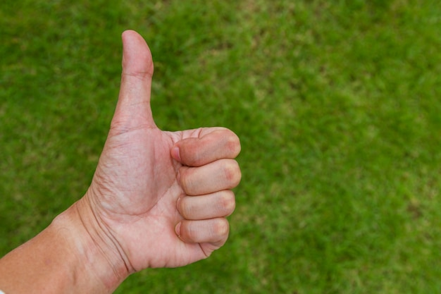 Mão, com, polegar cima, sinal, ligado, experiência grama verde