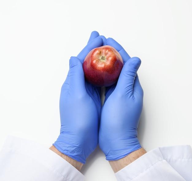 Mão com uma luva de látex azul segura uma maçã vermelha madura em um fundo branco, conceito de comida saudável, vista superior