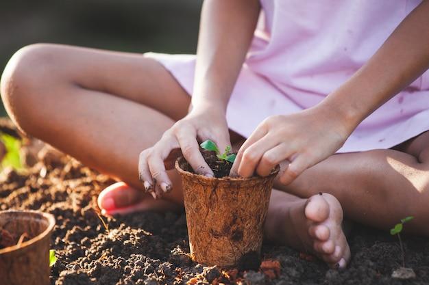 Mão criança, plantar, jovem, seedlings, em, recicle, fibra, potes, jardim