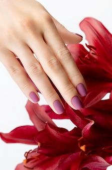 Mão da mulher bonita com manicure fosco cor de vinho com flor.