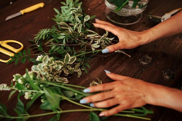 Mão da mulher, classificando as plantas na mesa de madeira