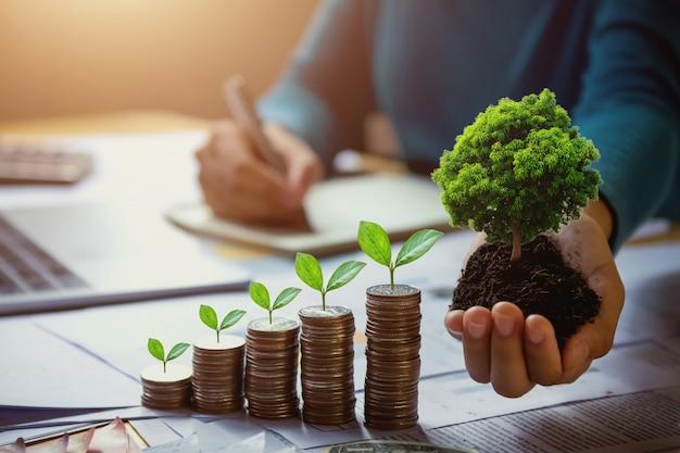 Mão da mulher de negócio que guarda a árvore com a planta que cresce em moedas. conceito de poupar dinheiro e dia da terra