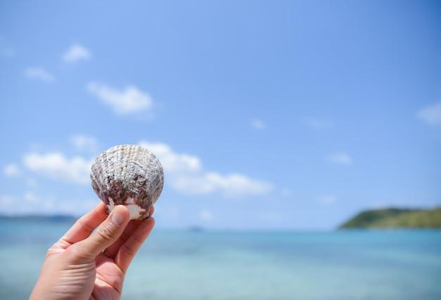 Mão da mulher que guarda um shell na praia com fundo borrado do mar e do céu azul. conceito de dia de verão.