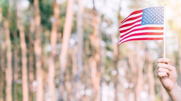 Mão de colheita levantando bandeira americana