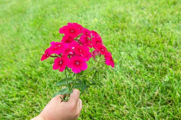 Mão de crianças segurando lindo buquê com flores pequenas brilhantes perfumadas