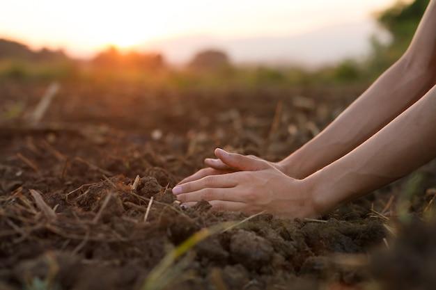 Mão de fazendeiro especialista verificando a qualidade do solo