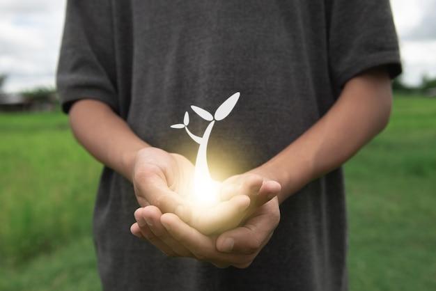 Mão de fundo verde do dia mundial do meio ambiente segurando árvore na grama do campo natural