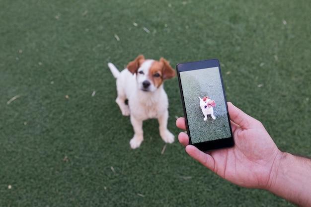 Mão de homem com telefone móvel esperto, tirando uma foto de um cachorro pequeno bonito sobre grama verde