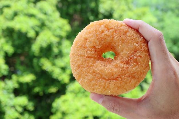 Mão de homem segurando um donut de canela com folhagem verde no pano de fundo