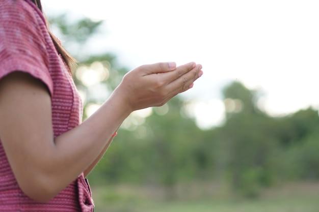 Mão de mulher asiática pedindo bênçãos de deus fundo verde prado