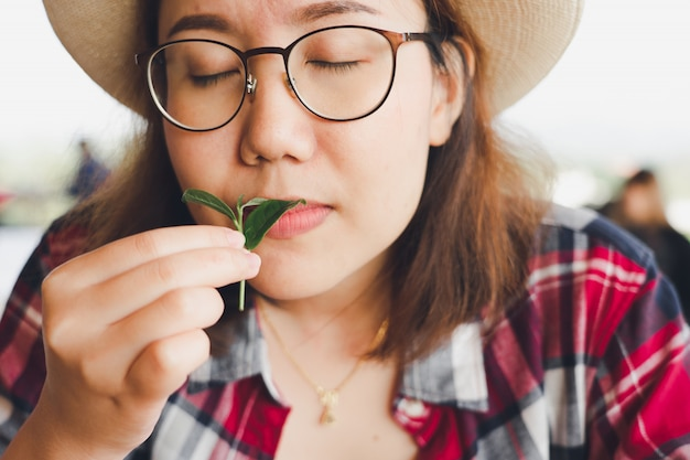 Mão de mulher asiática pegando as folhas de chá da plantação de chá