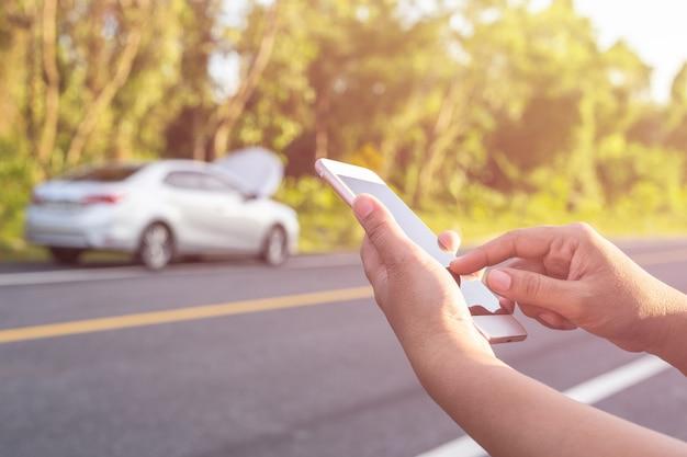 Mão, de, mulher segura, ou, usando, smartphone, ligado, verde, borrão, e, luz solar, efeito