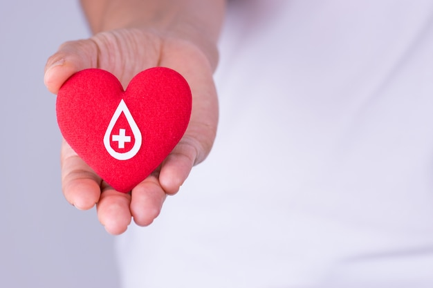 Mão de mulher segurando coração vermelho com sinal de doador de sangue feito de papel branco para conceito de doação de sangue