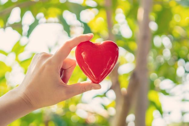Mão de mulher segurando coração vermelho forma sobre fundo verde natural no jardim ao ar livre