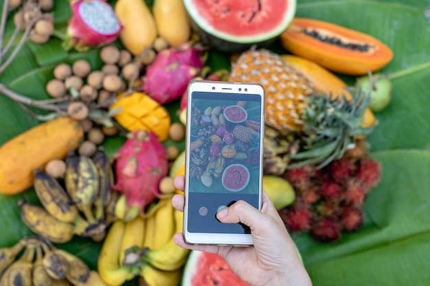 Mão de mulher tirar fotografia de frutas tropicais. doce de manga, mamão, pitahaya, banana, melancia, abacaxi. comida vegetariana vegana crua saudável, close-up
