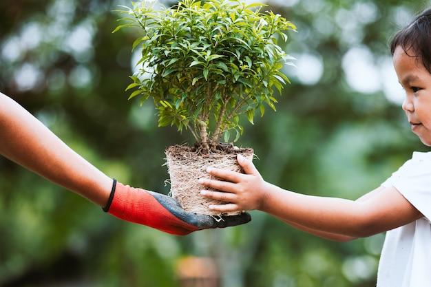 Mão de pai usando a luva dando árvore jovem para uma criança para o plantio juntos