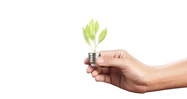 Mão de segurar a lâmpada iluminada, inspiração de inovação