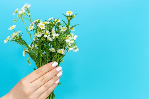 Mão de uma mulher com uma manicure branca segura buquê de flores sobre fundo azul