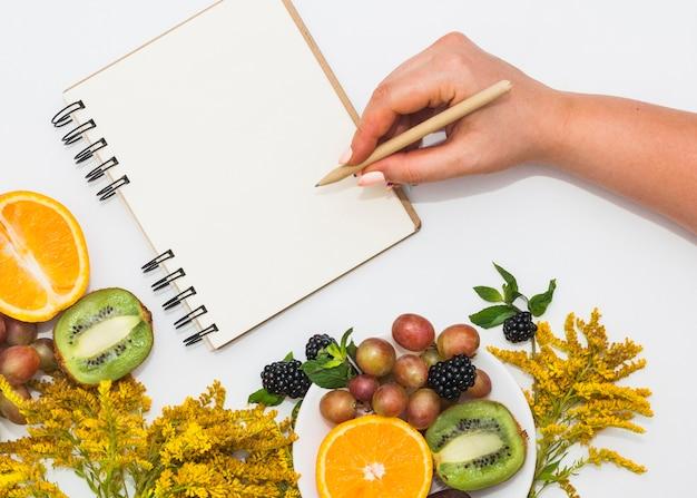 Mão de uma mulher de desenho na nota espiral branca com lápis e muitas frutas no fundo branco