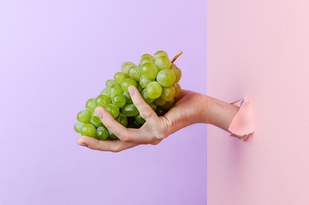 Mão de uma mulher segurando a uva verde madura através de papel rasgado pastel