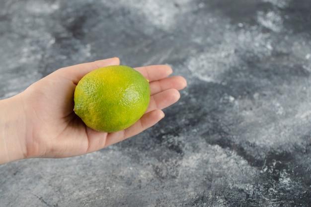 Mão de uma mulher segurando um limão verde fresco.