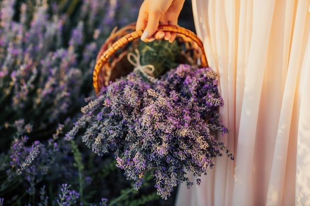 Mão de uma mulher segurando uma linda cesta de flores de lavanda.