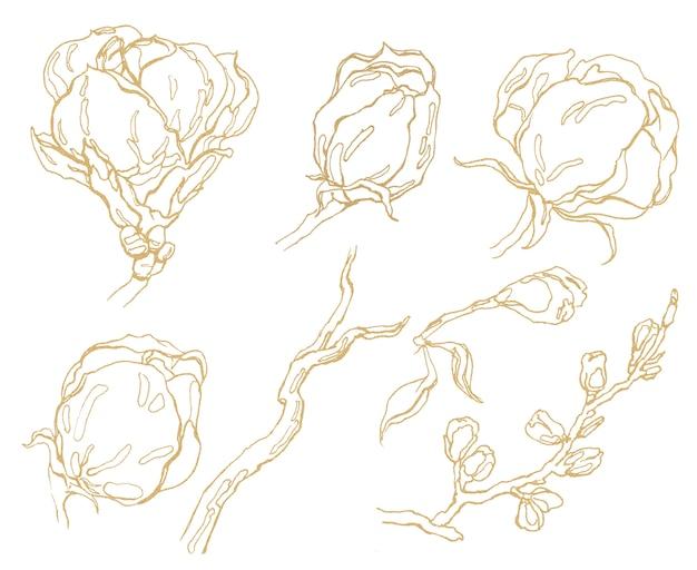 Mão desenhada flores gráficas douradas.