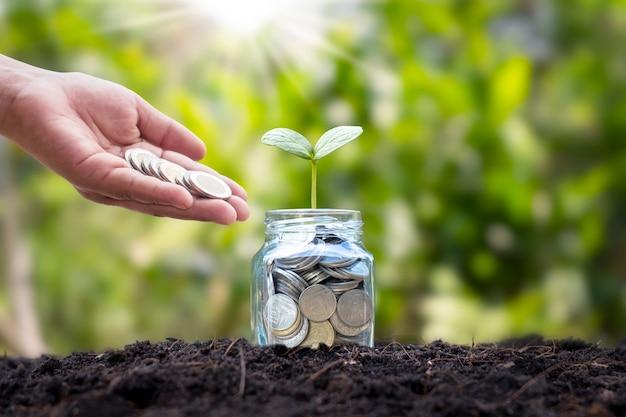 Mão despejando moedas em uma jarra de vidro com moedas e uma planta no solo e fundo desfocado