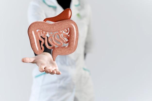 Mão do médico com intestino de render 3d. conceito de microbioma, bactérias intestinais saudáveis