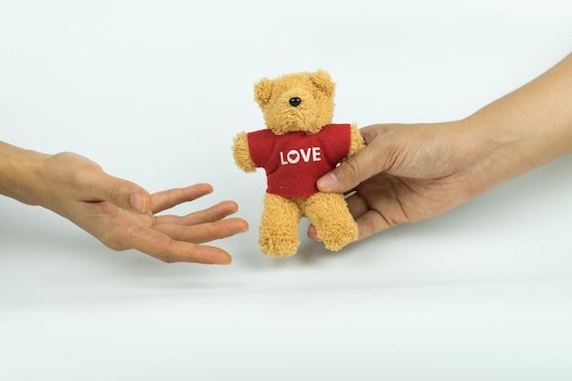 Mão e um ursinho de pelúcia