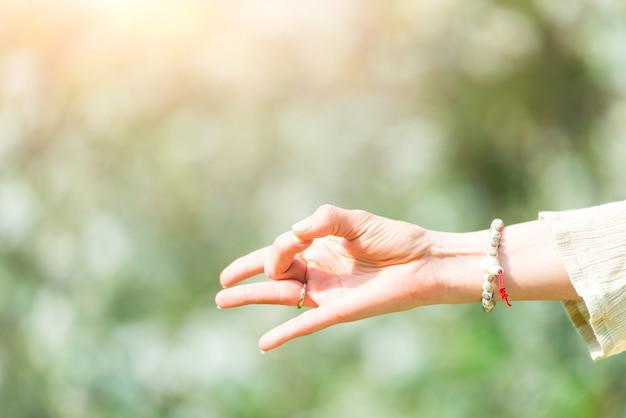 Mão em posição de ioga na natureza